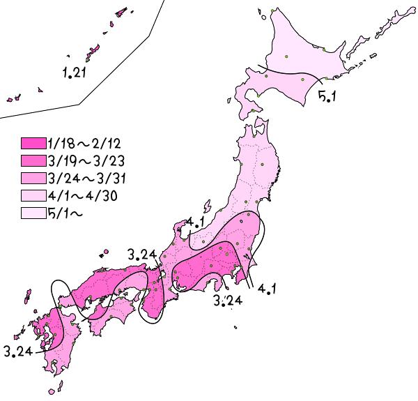 桜前線2016